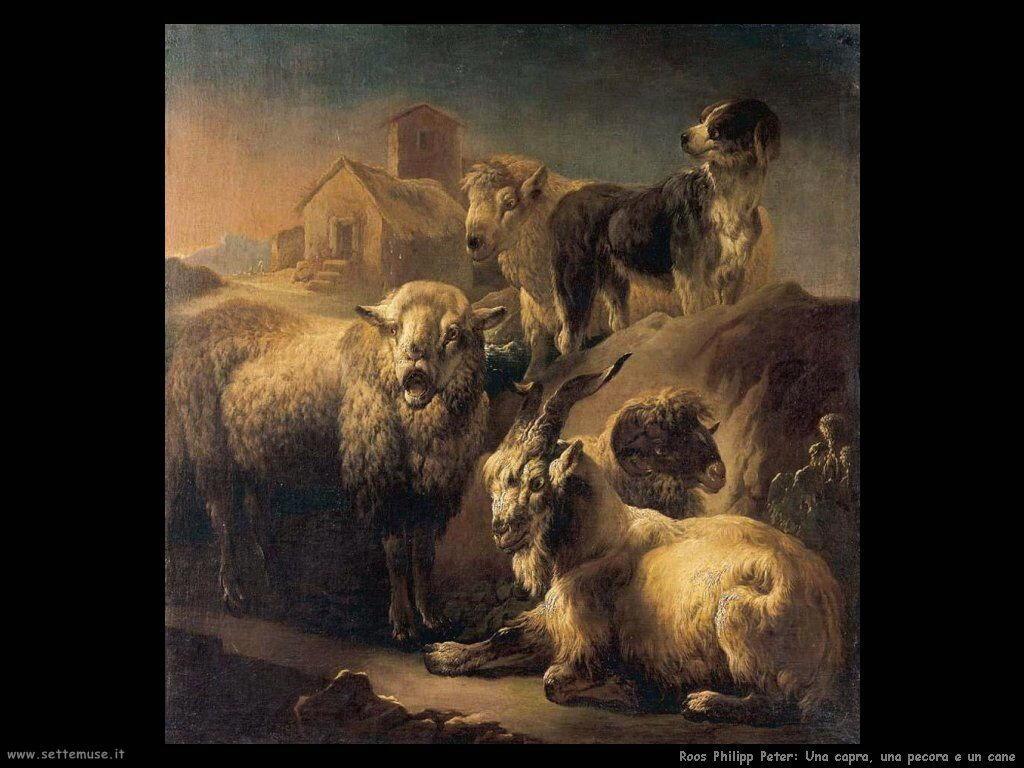 roos_philipp_peter Pecora e cane a riposo