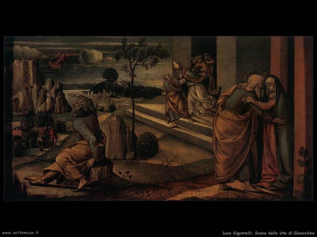 Signorelli Luca - scene dalla vita di Gioacchino