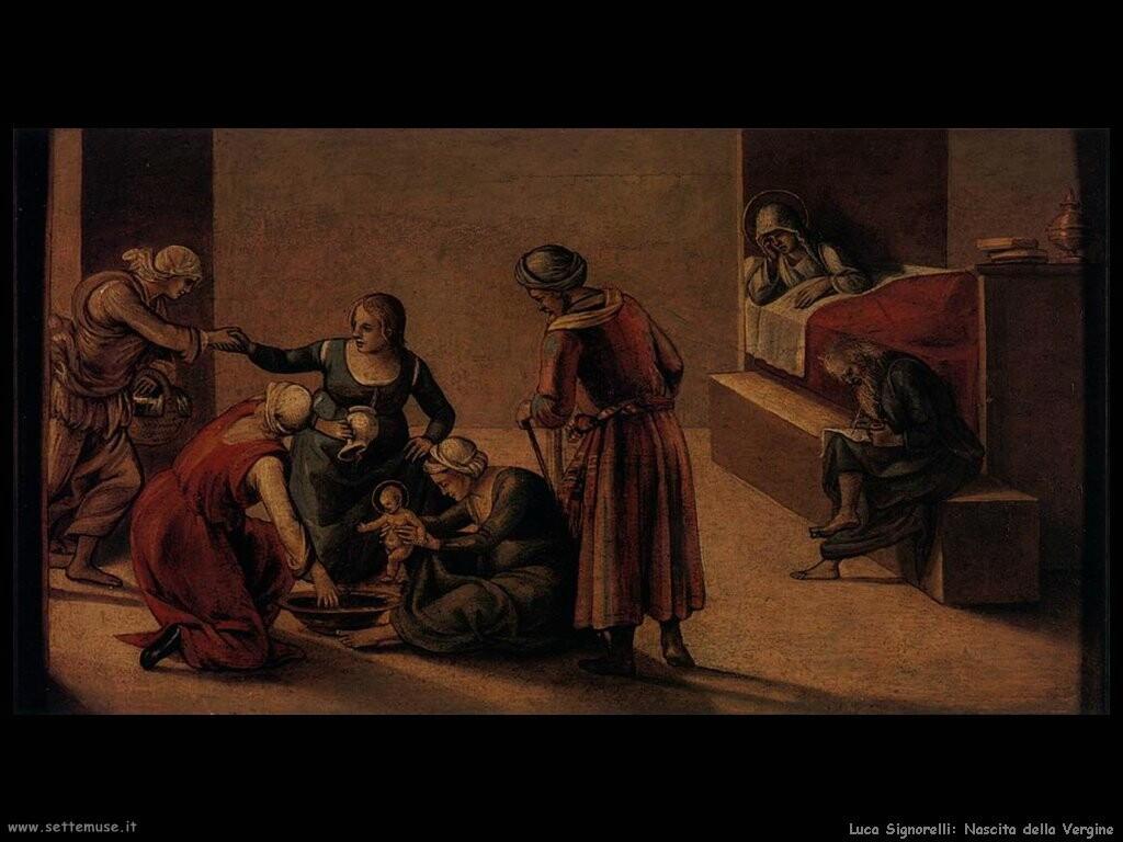 Signorelli Luca  nascita della Vergine