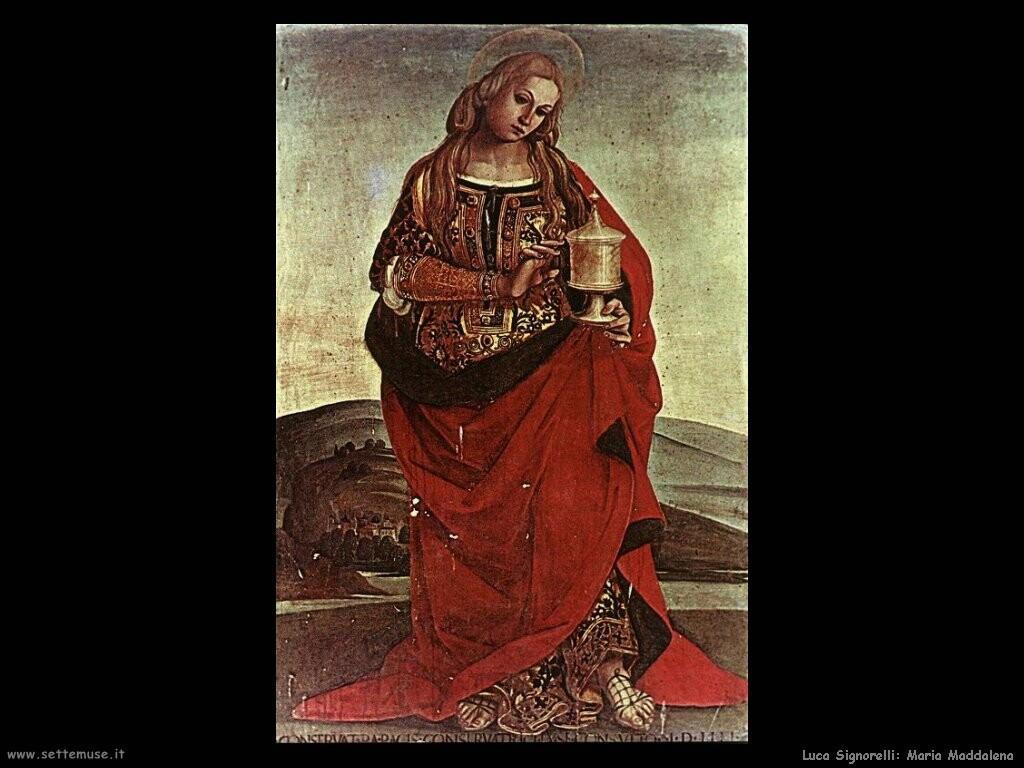 Signorelli Luca  - maria maddalena