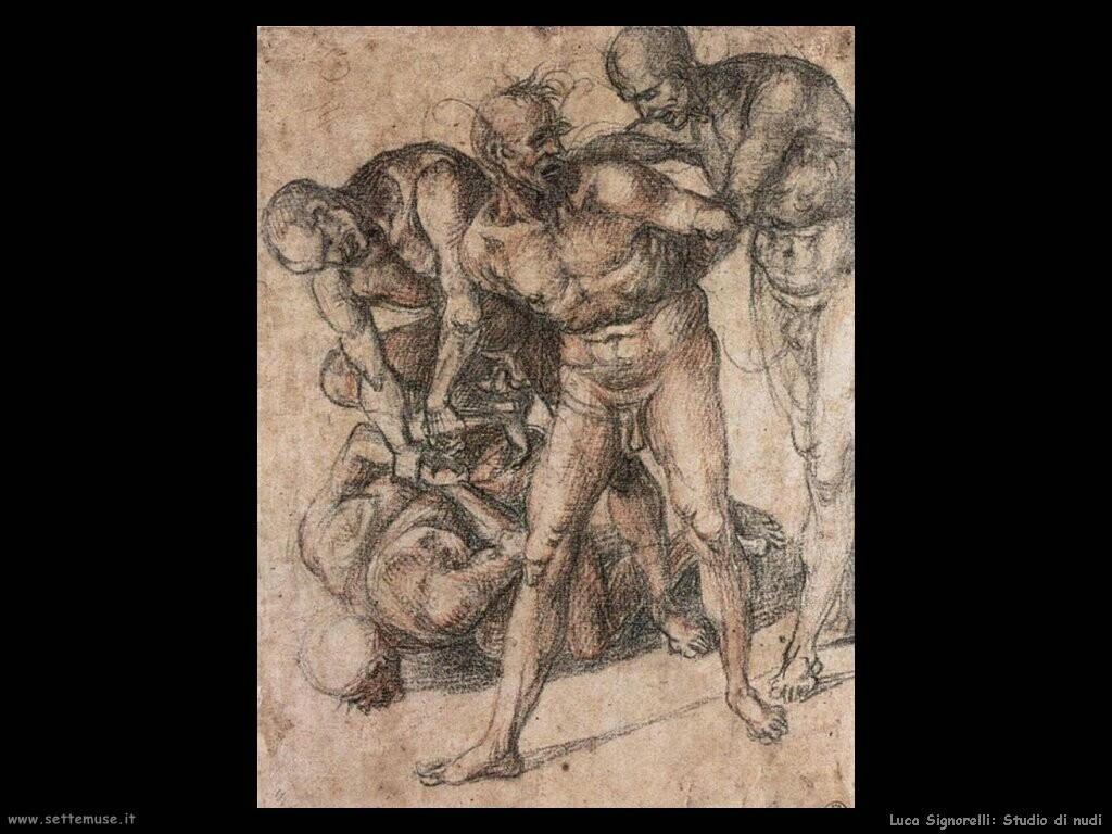 Signorelli Luca - studio di nudi