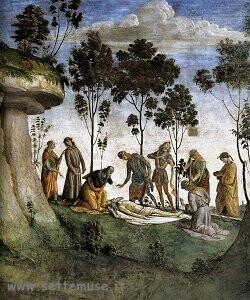 Pittura di Luca Signorelli