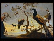 Snyders Frans Gruppo di uccelli pescatori sui rami