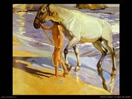 Il bagno del cavallo