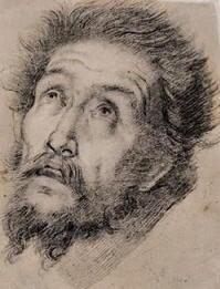Illustrazione di Bernardo Strozzi