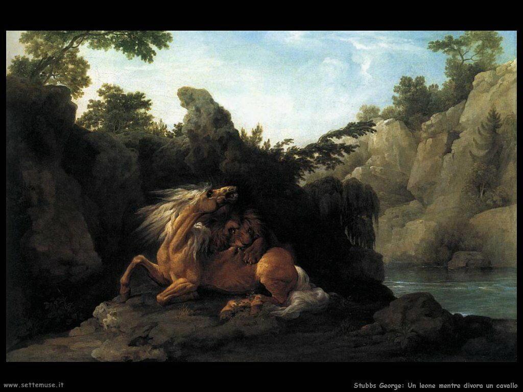 Leone mentre divora il cavallo Stubbs George