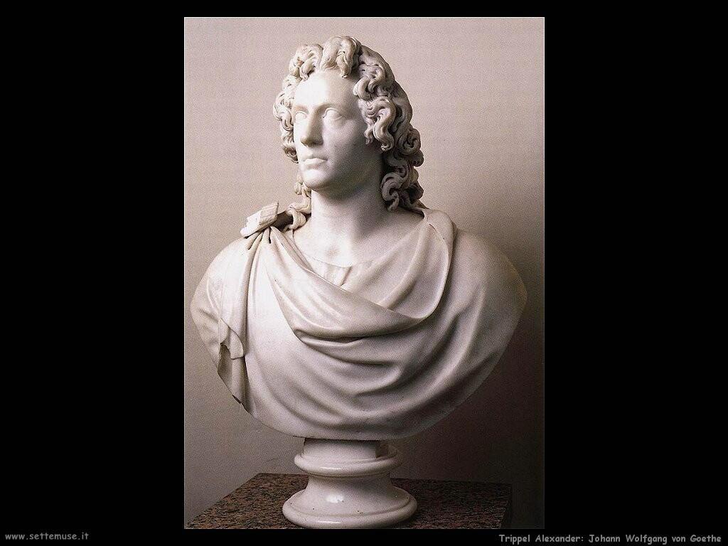Trippel Alexander