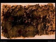 Tobey Mark untitled