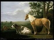 Van Calraet Abraham