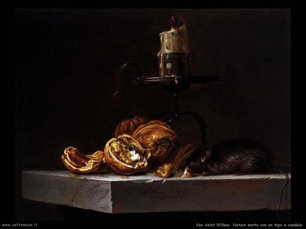Van Aelst Willem Natura Morta con gatto e candela