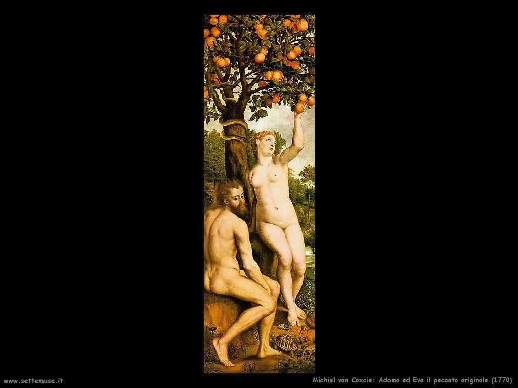 Van Coxcie Michiel Adamo d Eva. Il peccato originale 1770