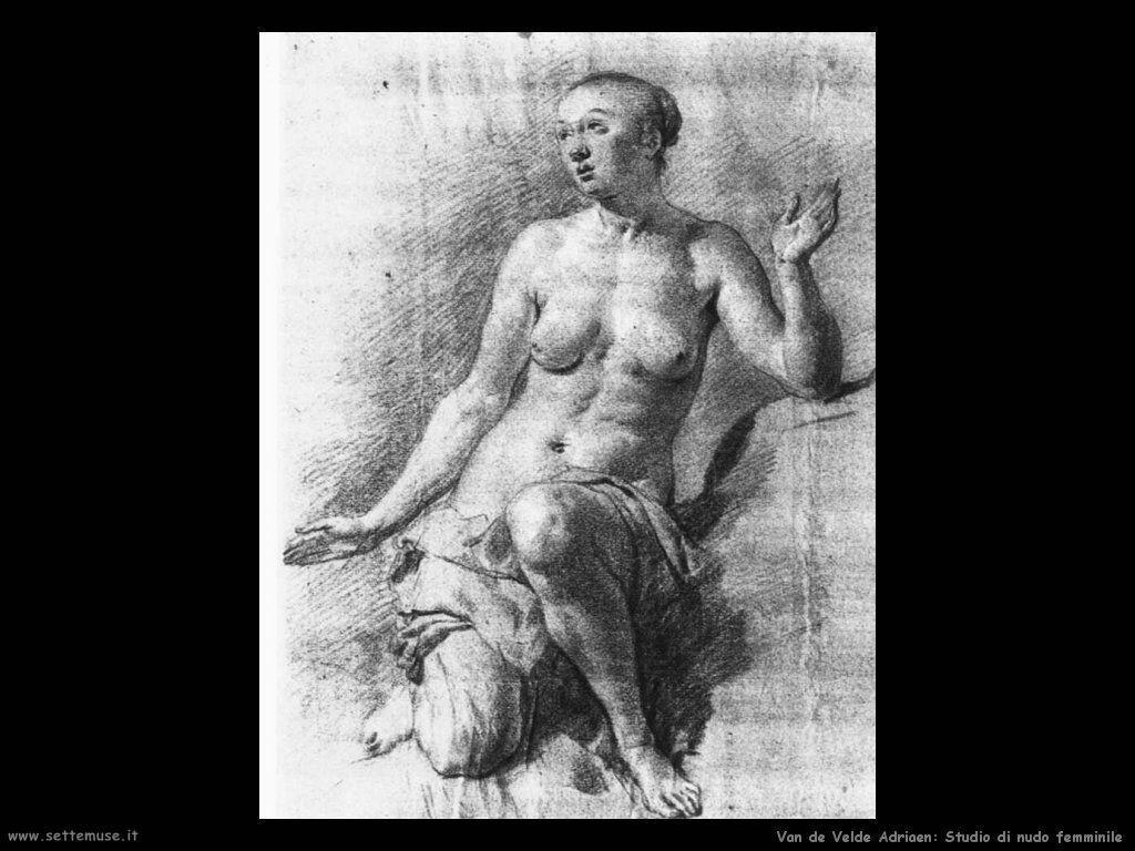 Van De Velde Adriaen Studio di donna nuda