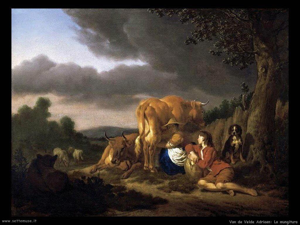 Van De Velde Adriaen Mungendo una mucca