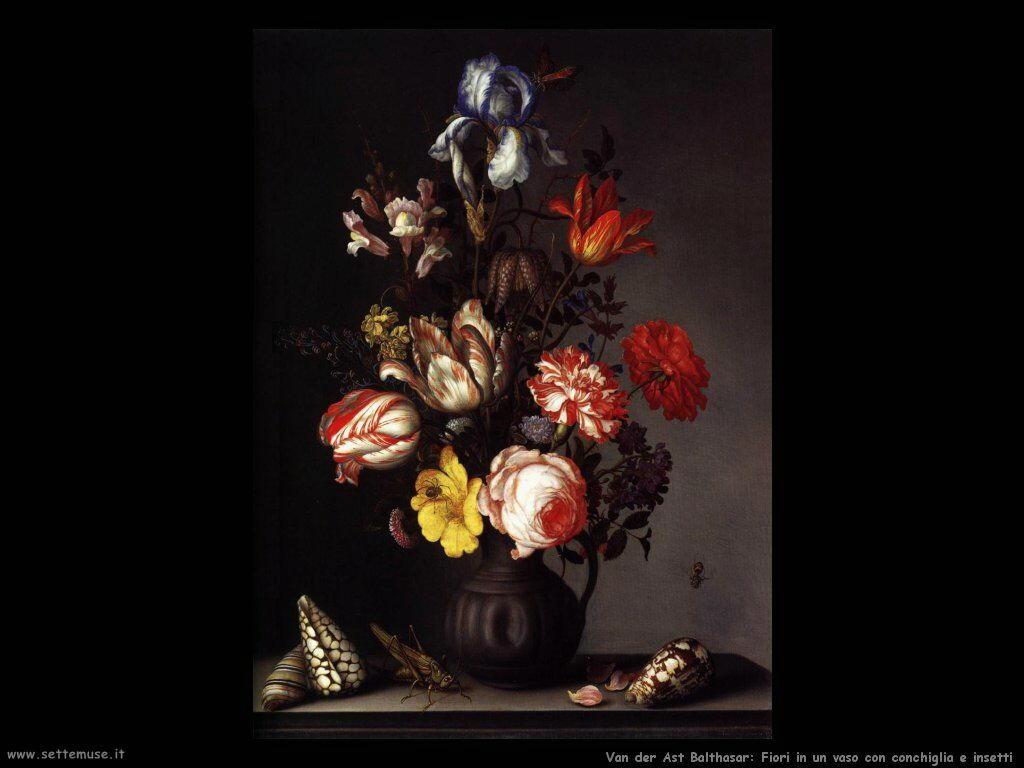 Vaso di fiori con conchiglie e insetti Van Der Ast Balthasar