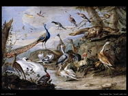 Uccelli su un argine Van Kessel Jan