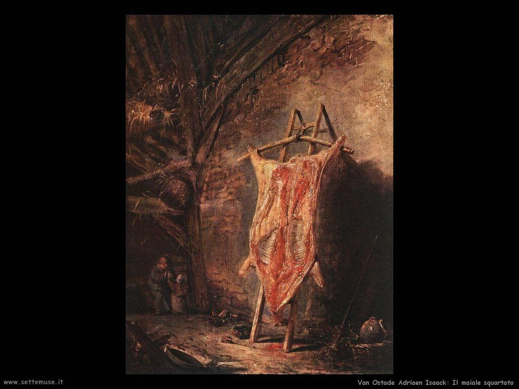 La pelle del maiale Van Ostade Isaack