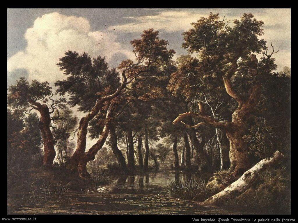 La palude nella foresta Van Ruysdael Jacob Isaackszon