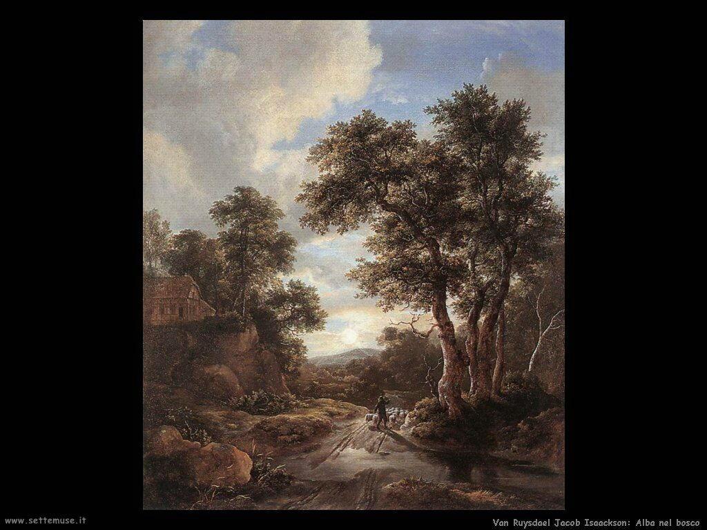 Alba in un bosco Van Ruysdael Jacob Isaackszon