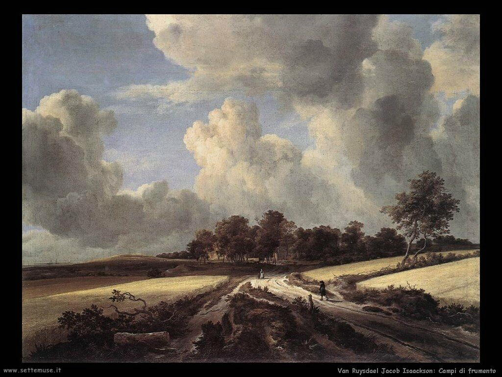 Campi di grano Van Ruysdael Jacob Isaackszon