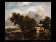 Boschetto sulle dune di Haarlem Van Ruysdael Jacob Isaackszon
