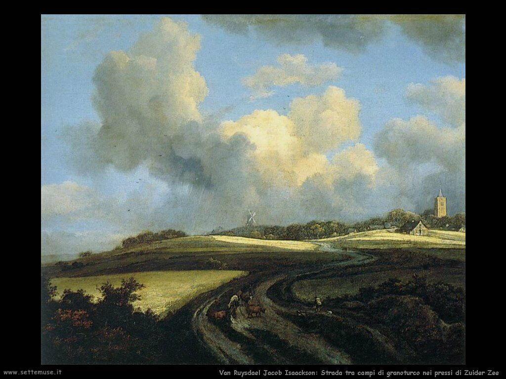 Strada attraverso campi di grano a zee Zuider Van Ruysdael Jacob Isaackszon