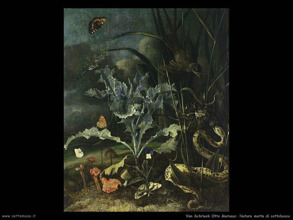 Van Schrieck, Otto Marseus Foresta natura morta
