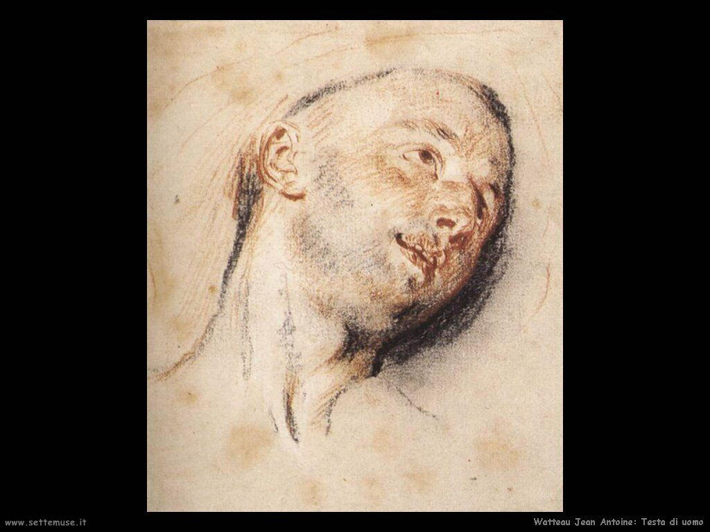 testa di un uomo Watteau Jean Antoine
