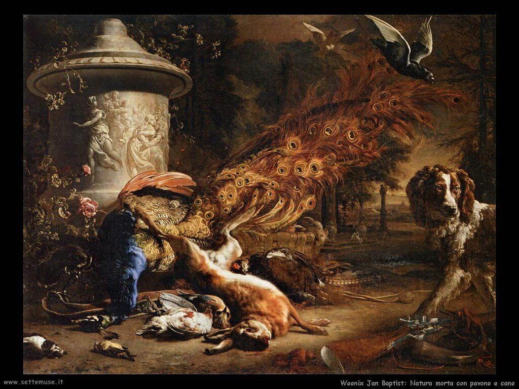Natura Morta con pavone e cane Weenix Jan Baptist