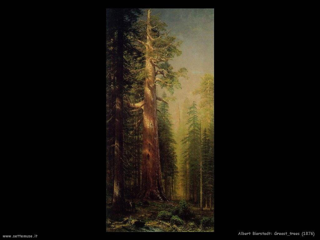 Albert Bierstadt Grandi Alberi_1876