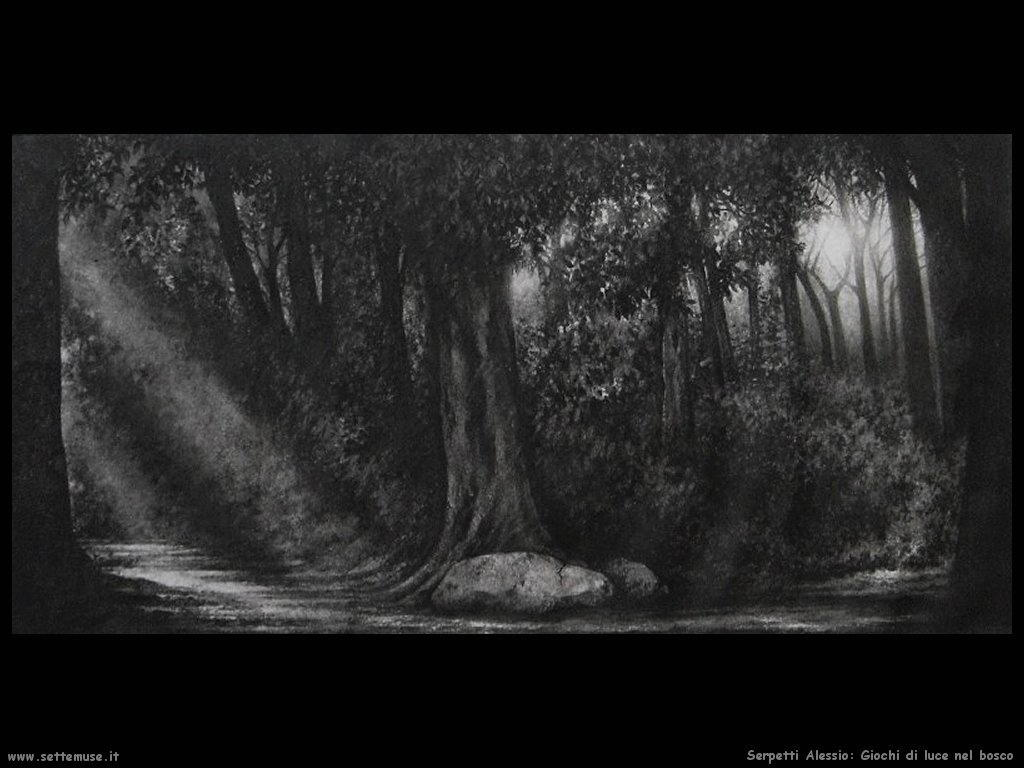 serpetti alessio Giochi di luce nel bosco
