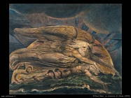 william_blake_007_creazione_di_adamo_1800