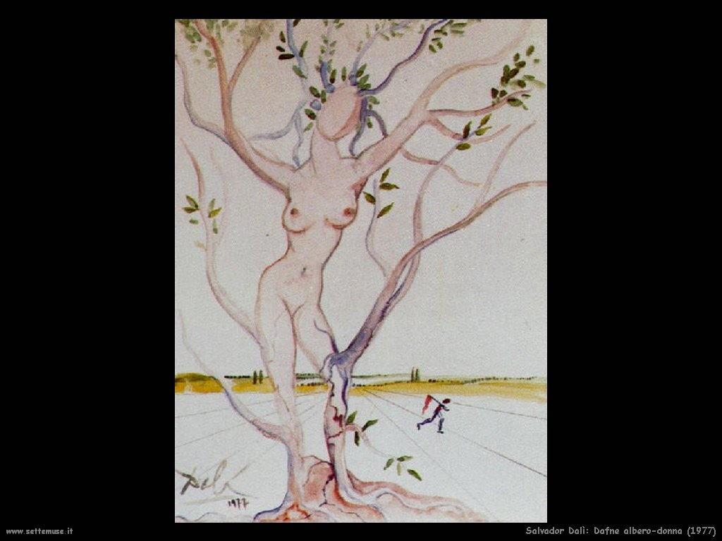 dali/1977_009_dafne_albero_donna