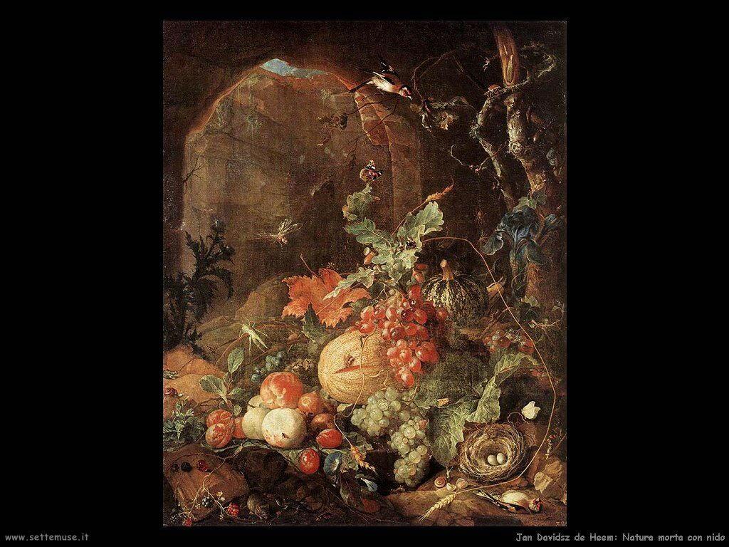 jan_davidsz_de_heem_012 natura morta con nido