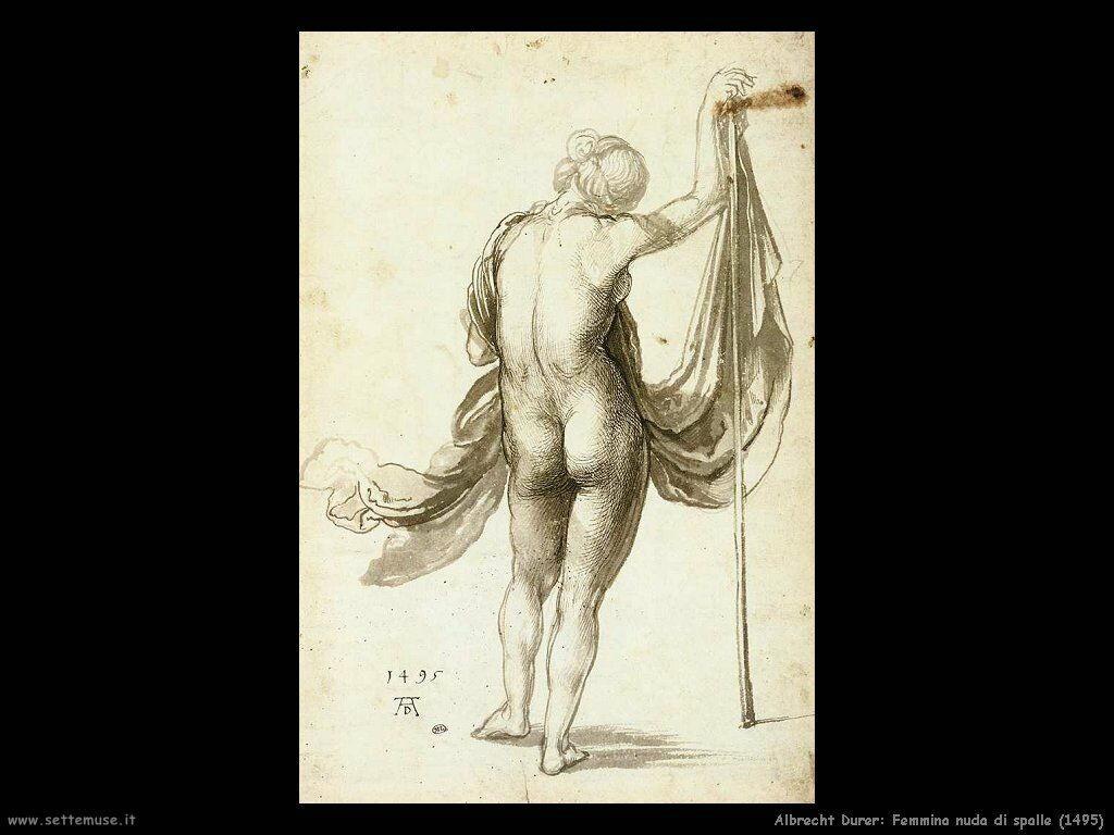 Femmina nuda di spalle (1495)