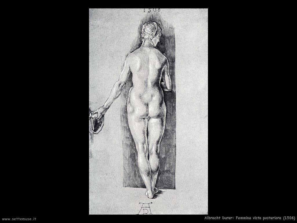 Femmina vista posteriore (1506)