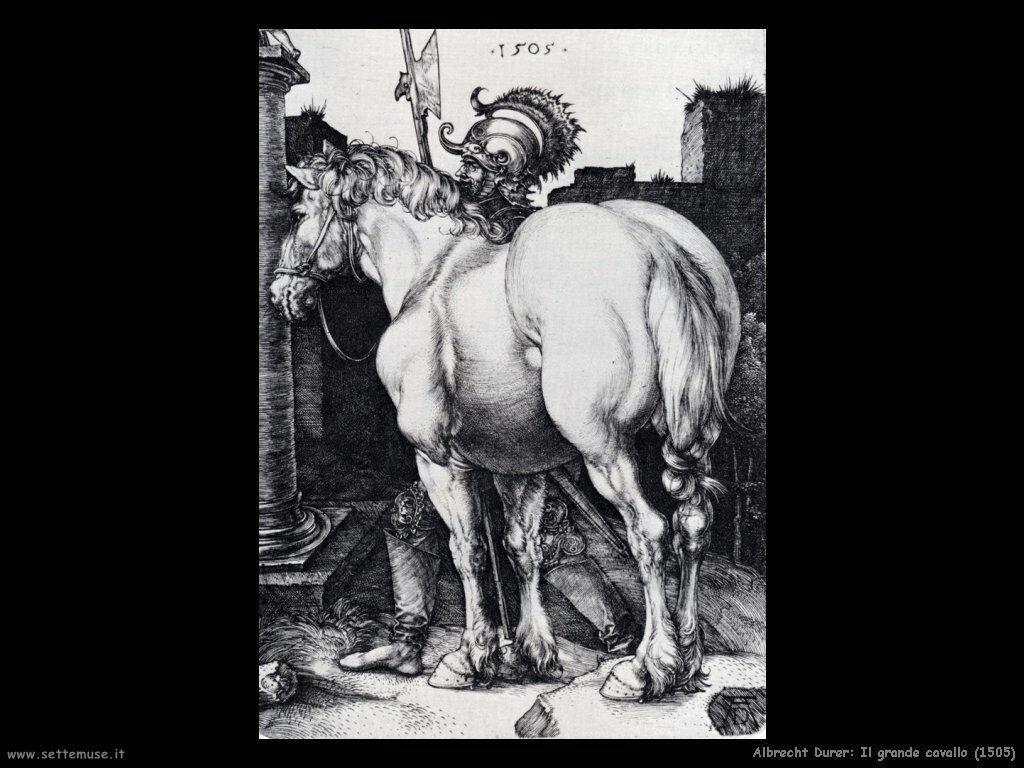 Il grande cavallo (1505) - Durer