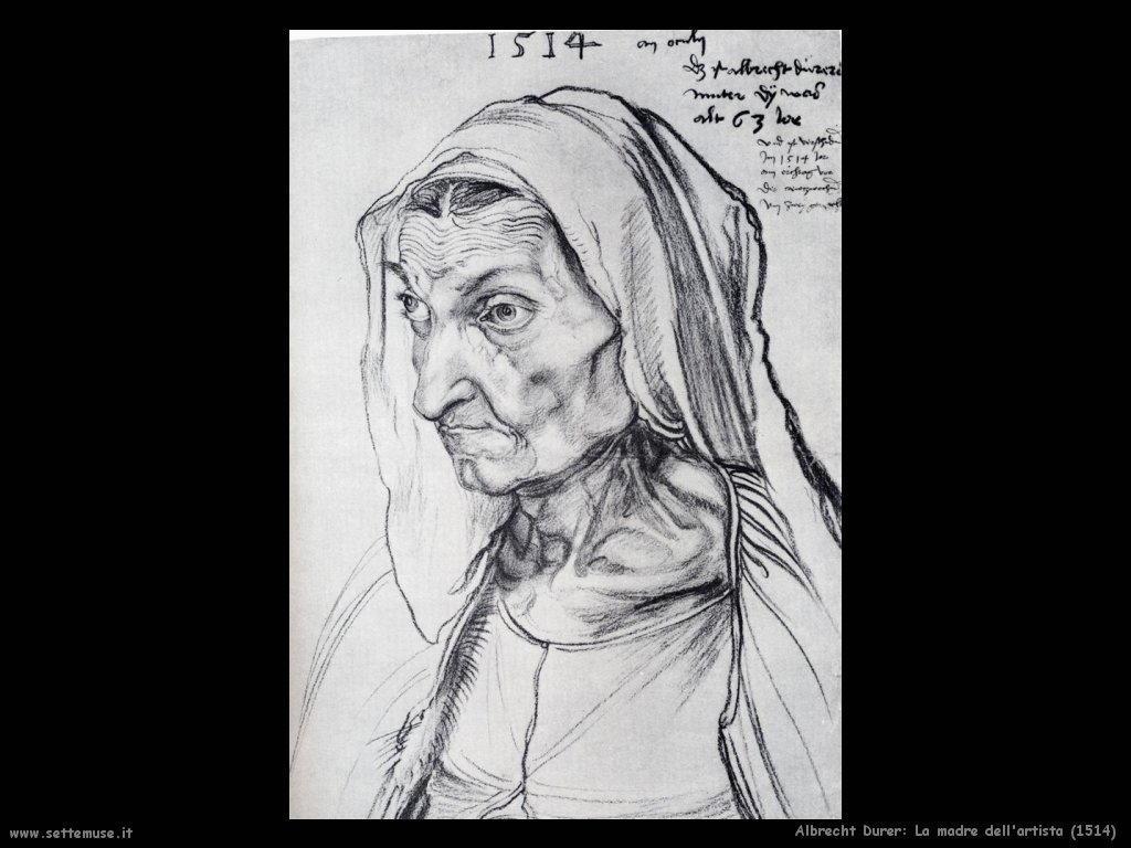 Madre dell'artista (1514)