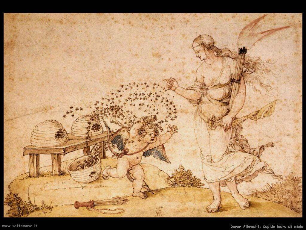 Cupido ladro di miele - Durer