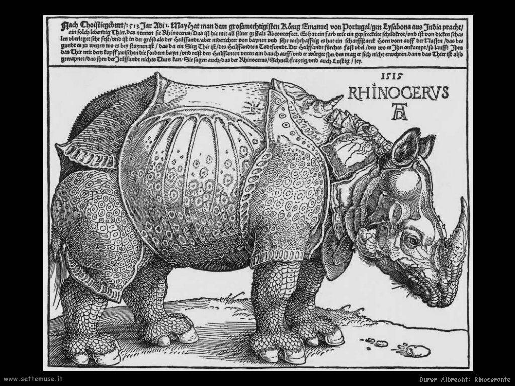 Rinoceronte (1515)