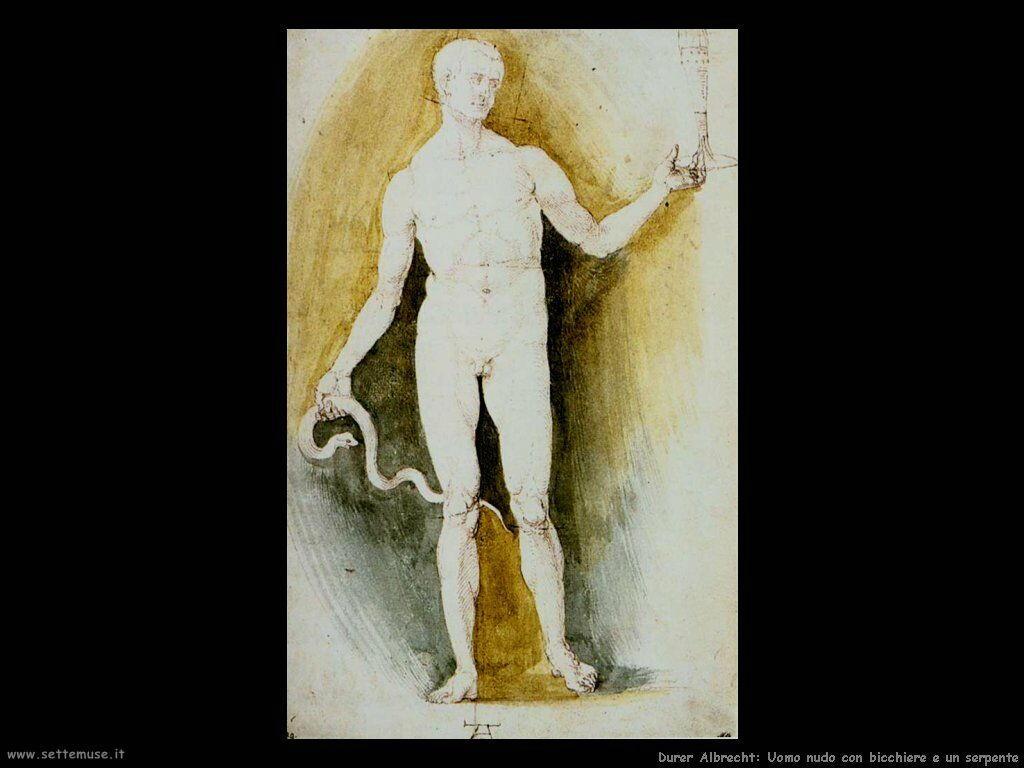 Uomo nudo con bicchiere e serpente