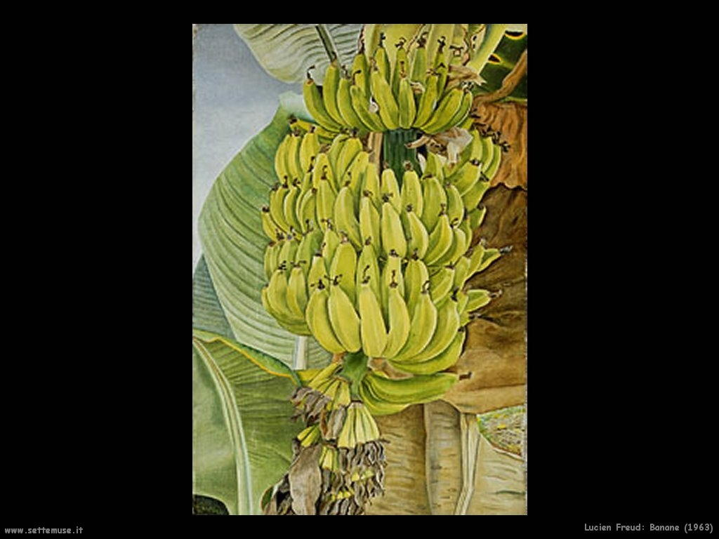 Lucian freud banane 1963