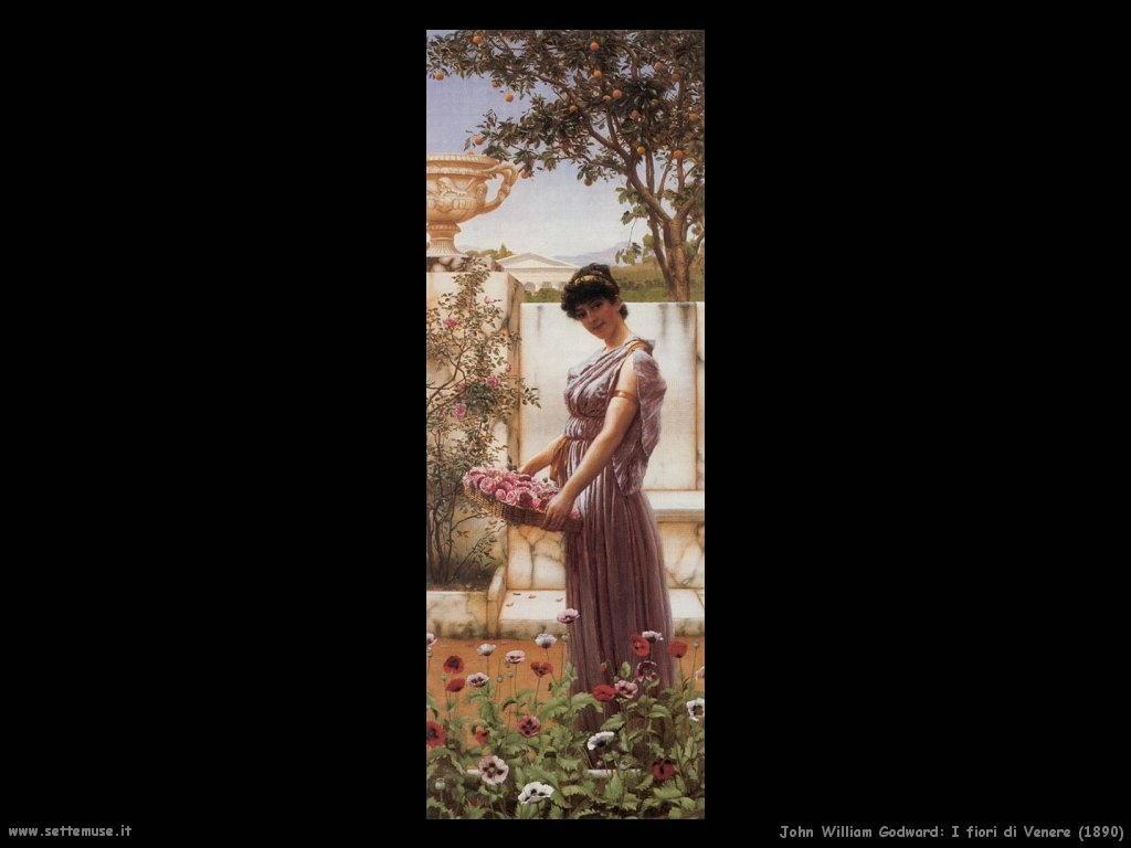 060_i_fiori_di_venere_1890