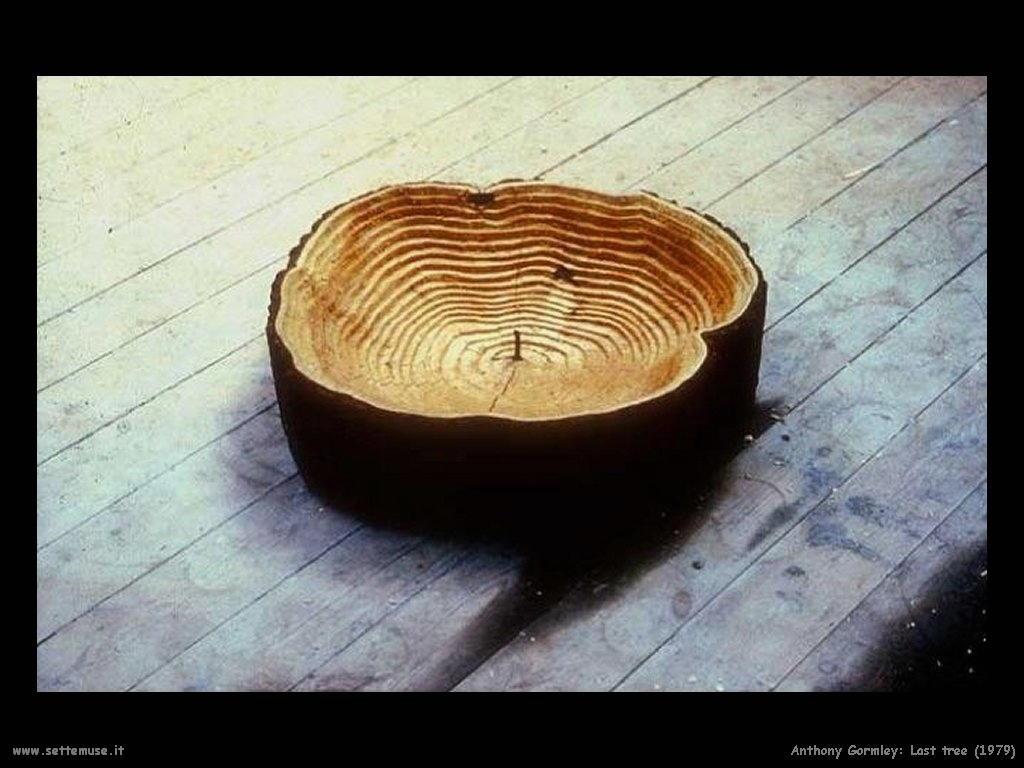 Ultimo albero (1979) AntonyGormley