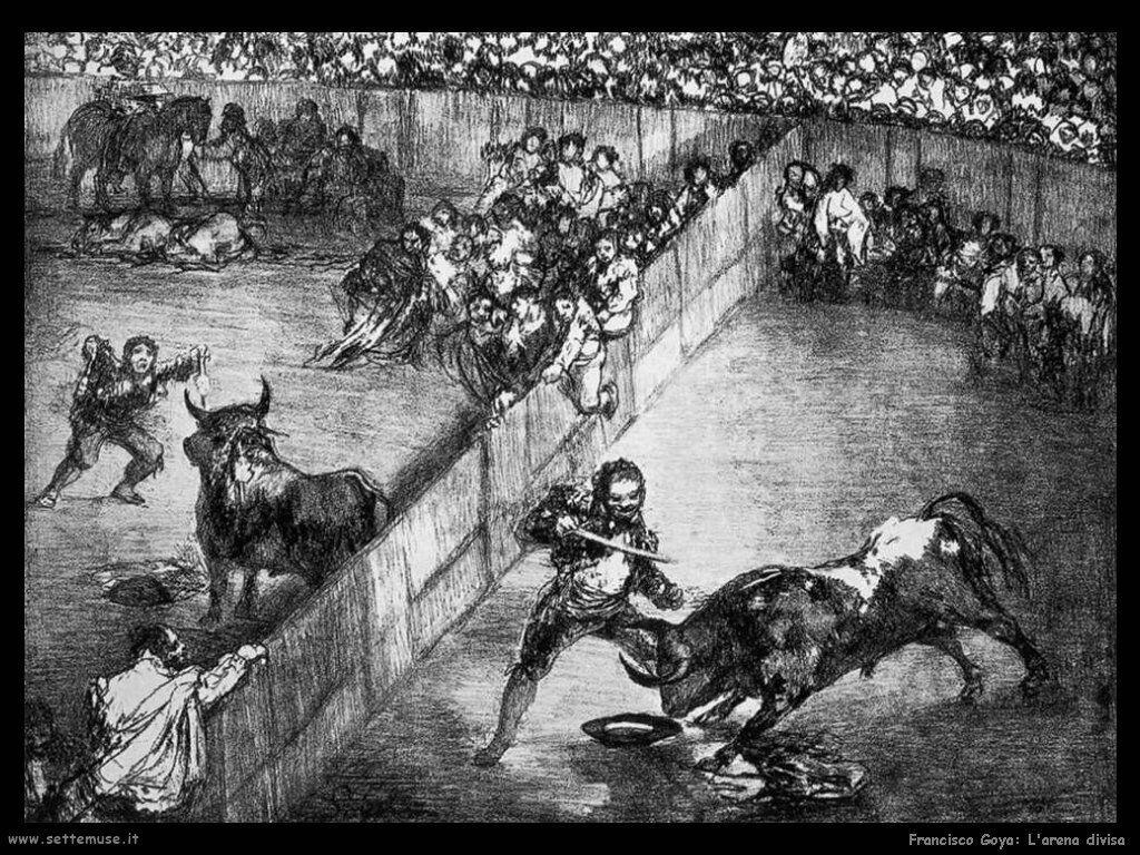 Francisco de Goya arena divisa