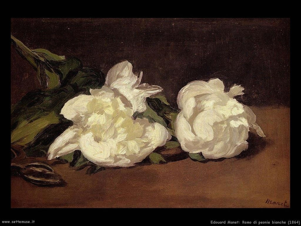 Edouard Manet _ramo_di_peonie_bianche_1864