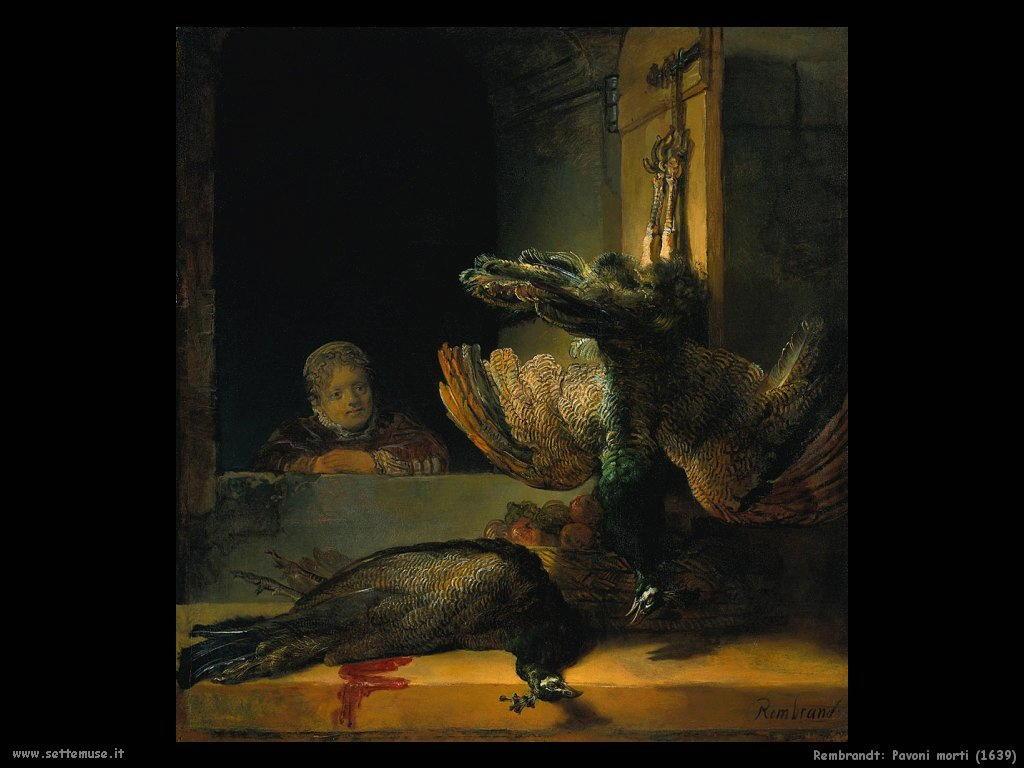 Rembrandt _pavoni_morti_1639