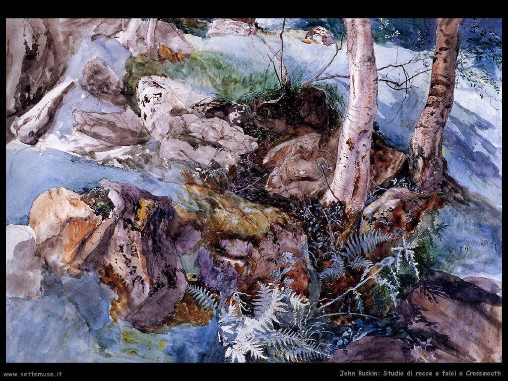 john_ruskin_005_study_of_the_rocks_and_ferns_crossmouth