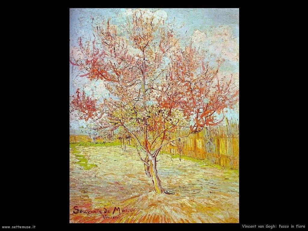 Vincent van Gogh 026