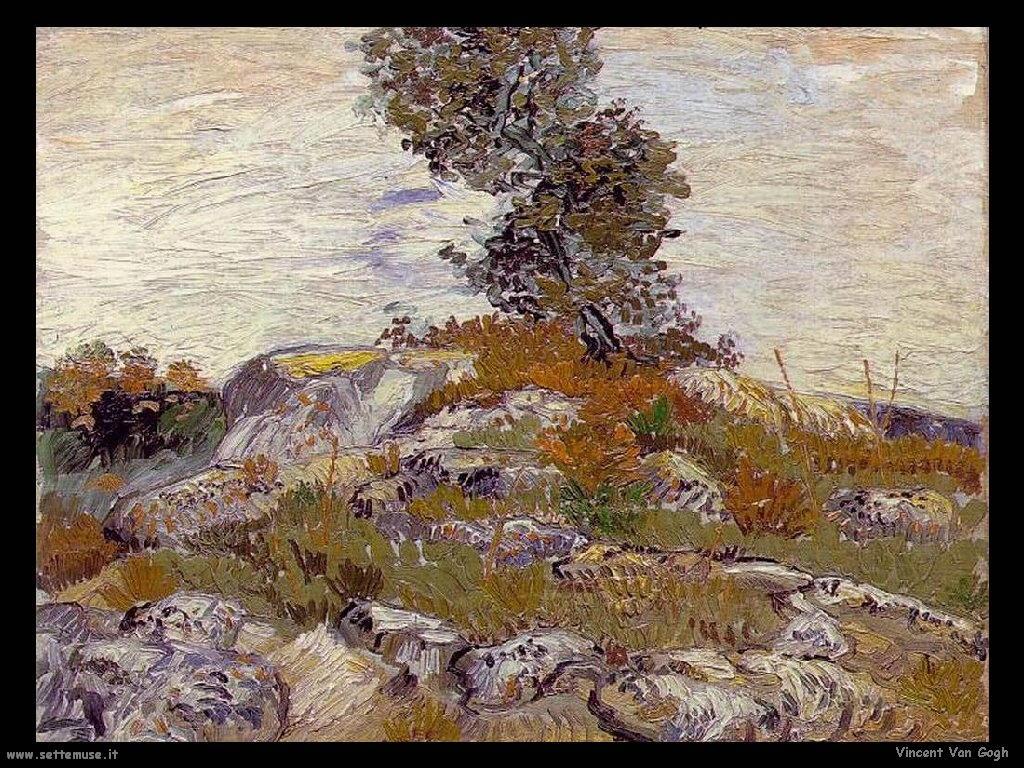 Vincent van Gogh 055