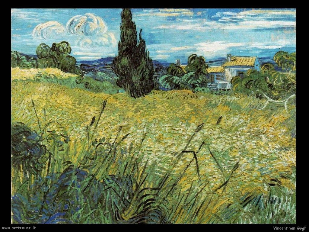 Vincent van Gogh 065
